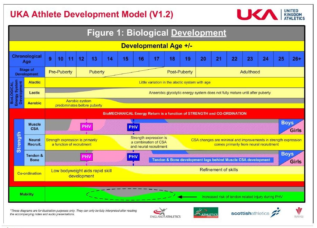 UK Athlete Development Model