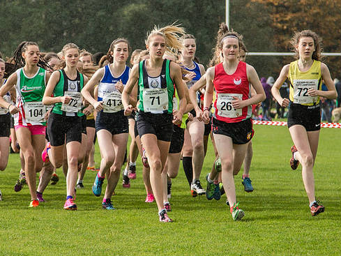 NI & Ulster Novice and Uneven Age Group XC set for Scotstown