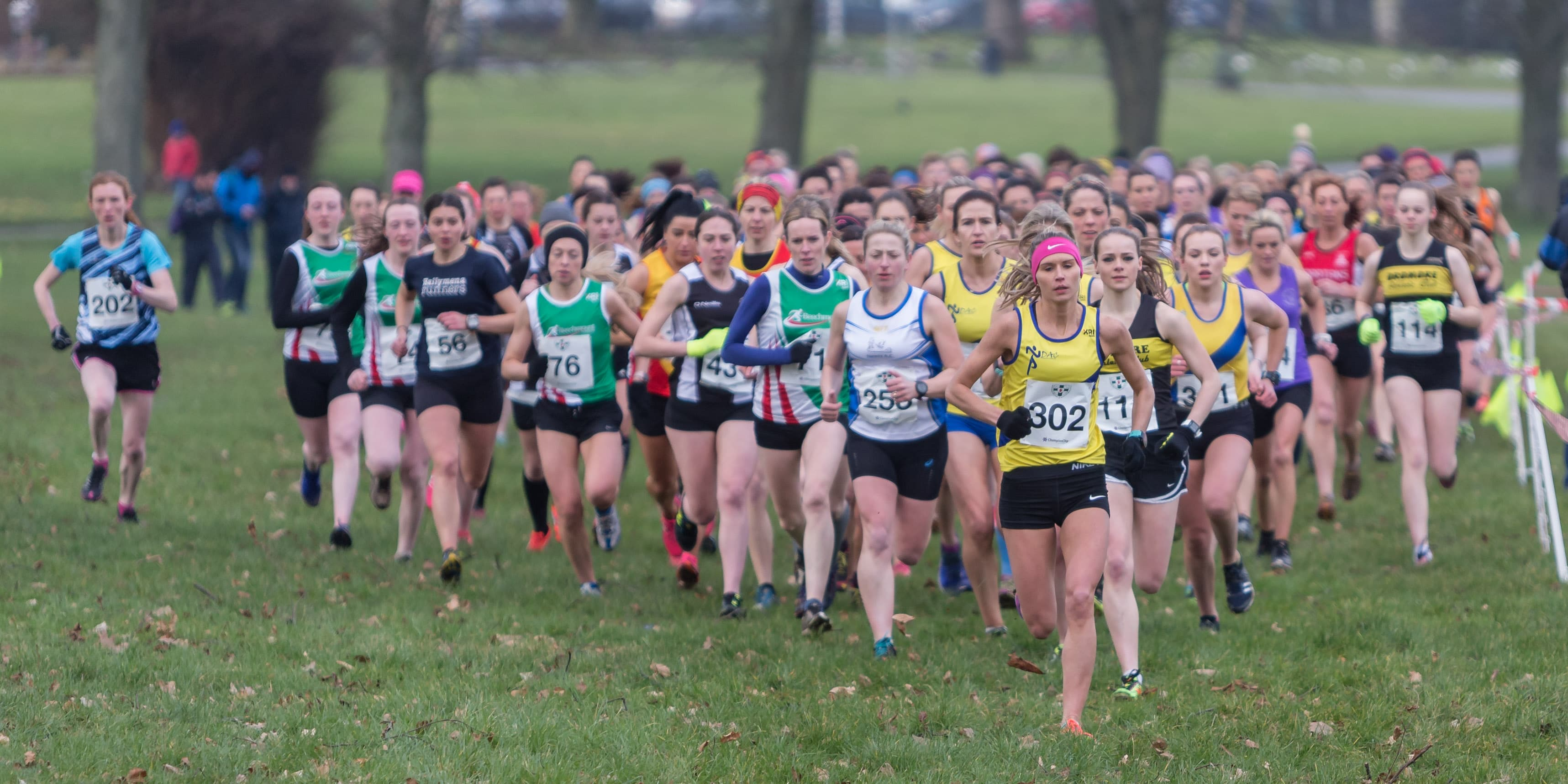 North Down AC and Foyle Valley AC come out on top of XC League